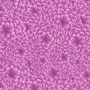Lilac Chrysanthemum
