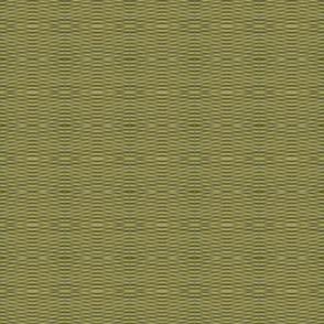 Blender-Olive