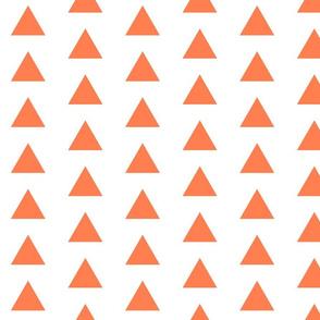 Coral Triangles
