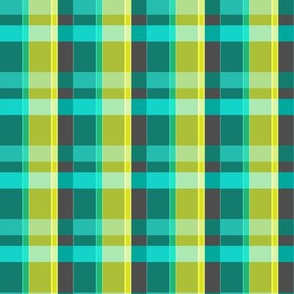 Plaid Lumberjack - Teal and Lime
