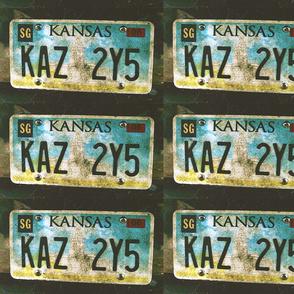 KAZ 2Y5 (3)