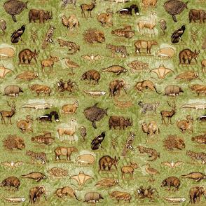 CAMO_ANIMALS_green