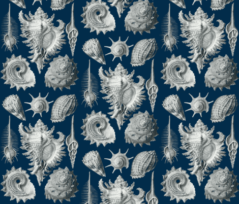 Tropical Seashells fabric by flyingfish on Spoonflower - custom fabric