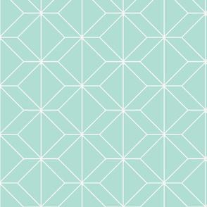 geometry mint