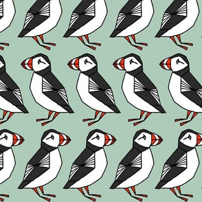 puffins // mint blue birds cute scotland winter birds