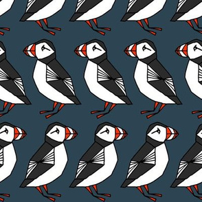 puffins // dark navy blue puffins birds bird