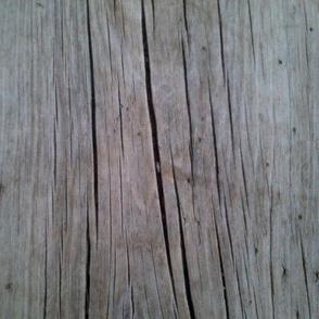 aged wood
