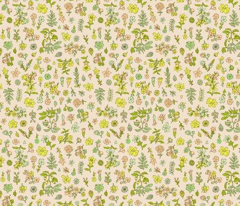 Rrexploded_flower_garden_color_4_shop_preview