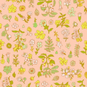 Exploded Flower Garden | Bright Peach