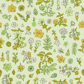 Exploded Flower Garden | Green/Orange