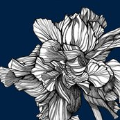 Hibiscusline_pillowfabric_midnight_shop_thumb