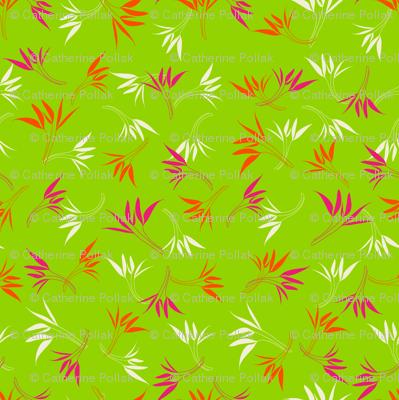Hyacinthe 2med