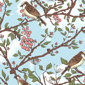 One spring day, a sparrow tree
