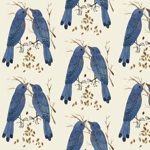 bluebirds natural