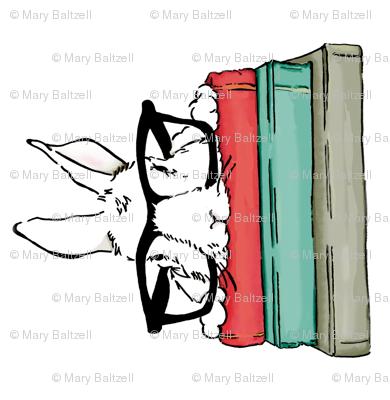 One Smart Bunny/ 90° angle