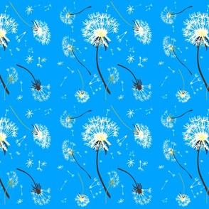 Pusteblumen blau 2