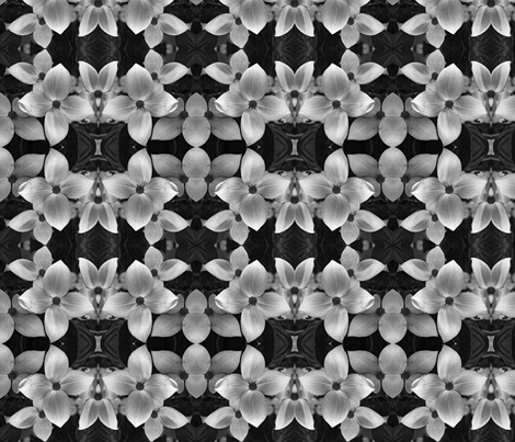 Black and White Dogwood 5168 fabric by falcon11 on Spoonflower - custom fabric