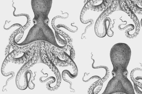 Rrroctopus2_shop_preview