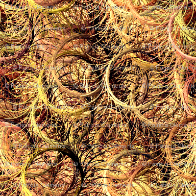 Circles_of_Grass-34-34