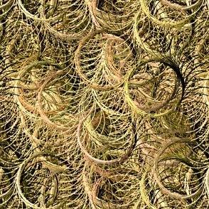 Circles_of_Grass-44-44