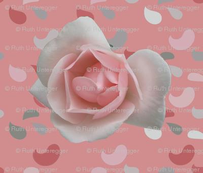 Paisley_rose_pink