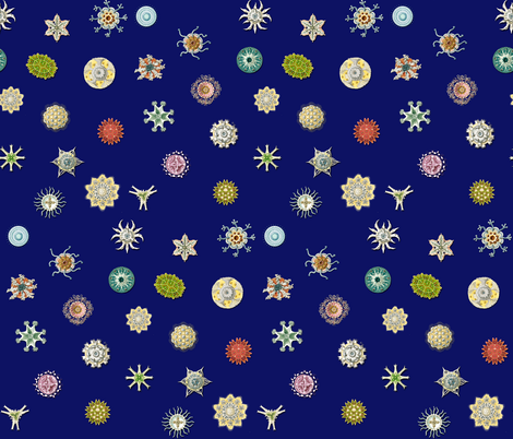 Diatom Dots- dark blue fabric by bbusbyarts on Spoonflower - custom fabric
