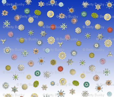 diatom_dot_blue_ombre
