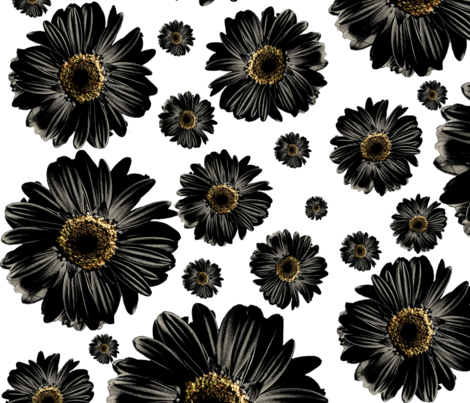 Black Daisies fabric by ophelia on Spoonflower - custom fabric