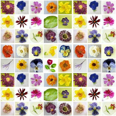 Rr2309839_rrrrrflower_collage_singles_shop_preview