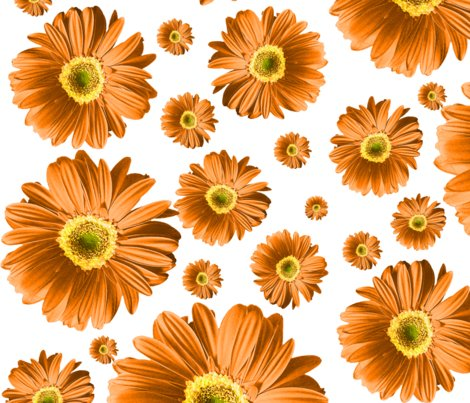 Pop-daisy-orange_repeat_shop_preview