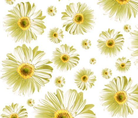 Pop-daisy-white_repeat_shop_preview