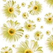 Pop-daisy-white_repeat_shop_thumb