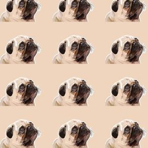 The Minki Pug