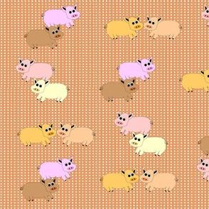 Devon_Meadows_Sunshine_and_Rain_Pigs