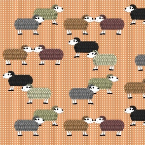 Devon_Meadows_Sunshine_and_Rain_Sheep
