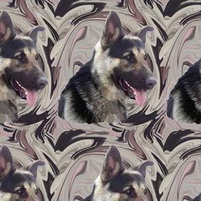 German Shepherd swirl Portrait