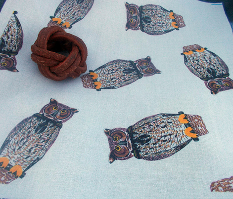Wood Badge Owls