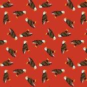 Rrcustom_eagles_red_shop_thumb