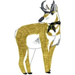 antelope swatch