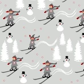 winter sports ski