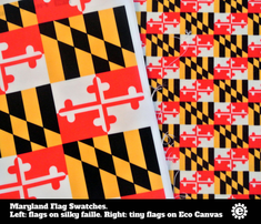 Rrmaryland-flag-true-color_comment_465678_thumb