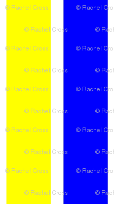 Rrrimg_0580_stripe_preview