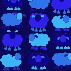 blue sheeps