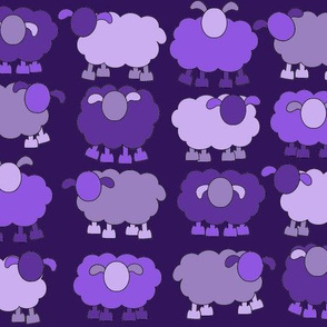 purple sheeps
