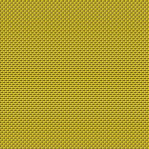 sija amarillo-negro