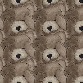 Peekaboo Bears
