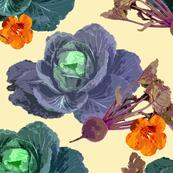 cream_cabbage