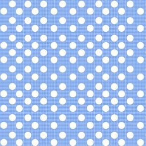 chambray dots