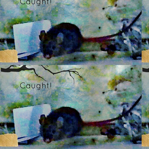 Mouse crimes