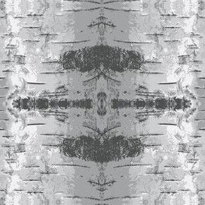 Birch bark Grey